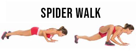 spider-walk-crossfit