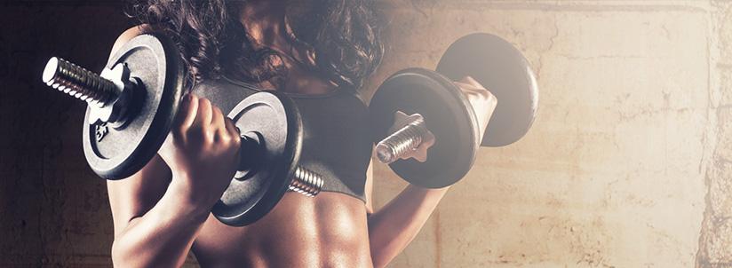 Renforcement musculaire programme musculation gratuit