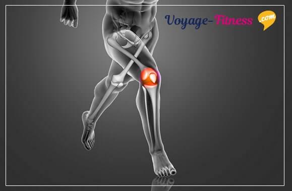 article sur la rupture des ligaments croises anterieurs